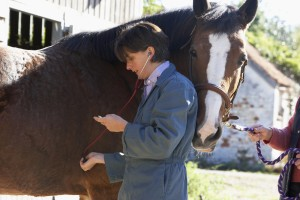 how to tell if your horse has epm
